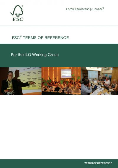 ILO Working Group ToR