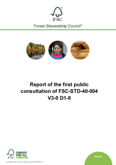 Report - First Public Consultation