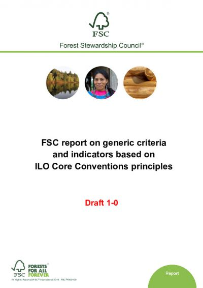 FSC report on generic criteria and indicators based on ILO Core Conventions principles D1-0 EN