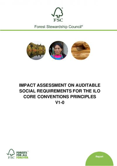 Impact Assessment on auditable social requirements on ILO Core Conventions principles V1-0 EN