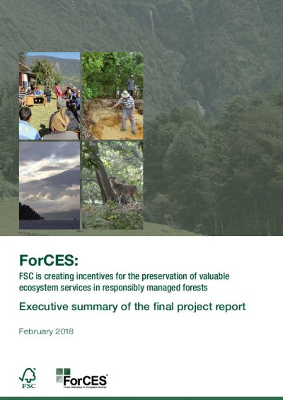 ForCES Report Executive Summary