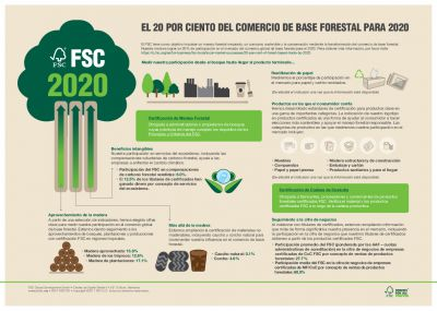 20 PER CENT OF FOREST-BASED TRADE BY 2020 - INFOGRAPHIC_ES