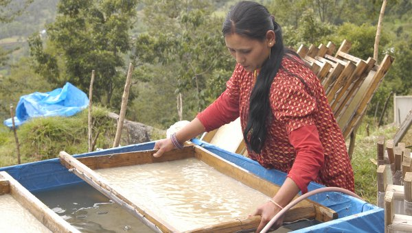 Woman making paper (© Himalayan Bio Trade)