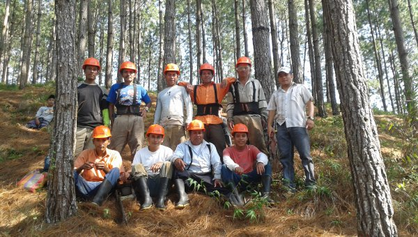 Mayan descendants weave forestry into traditional farming