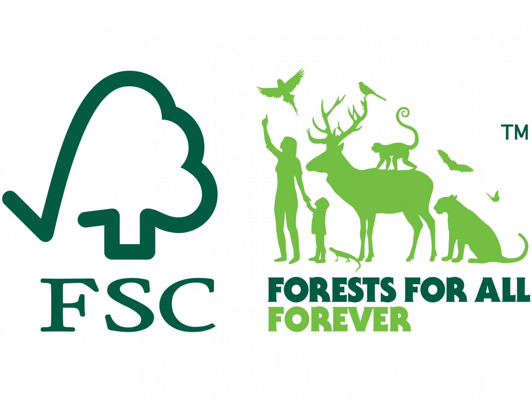 forestry stewardship council school supply packs