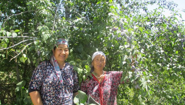 Kyrgyzstan pioneers smallholder certification in Central Asia (© FSC CIS)