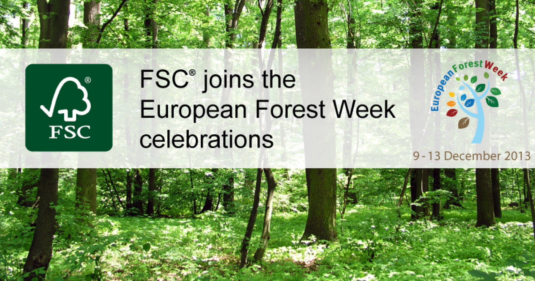 FSC to host a Side Event at the European Forest Week