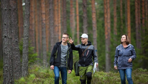 – Sustainable forest management safeguards forest health and productivity, helps combat global warming, and protects biodiversity. (© Stora Enso)
